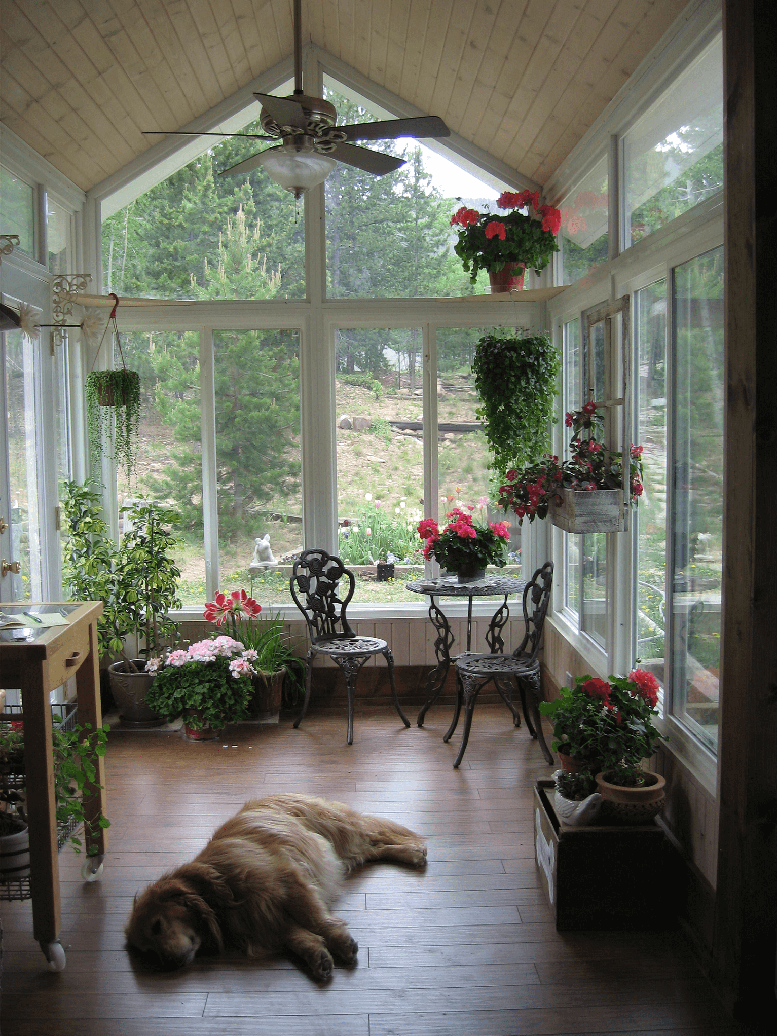 Creative Screened Porch Design Ideas Sunroom Decorating Small