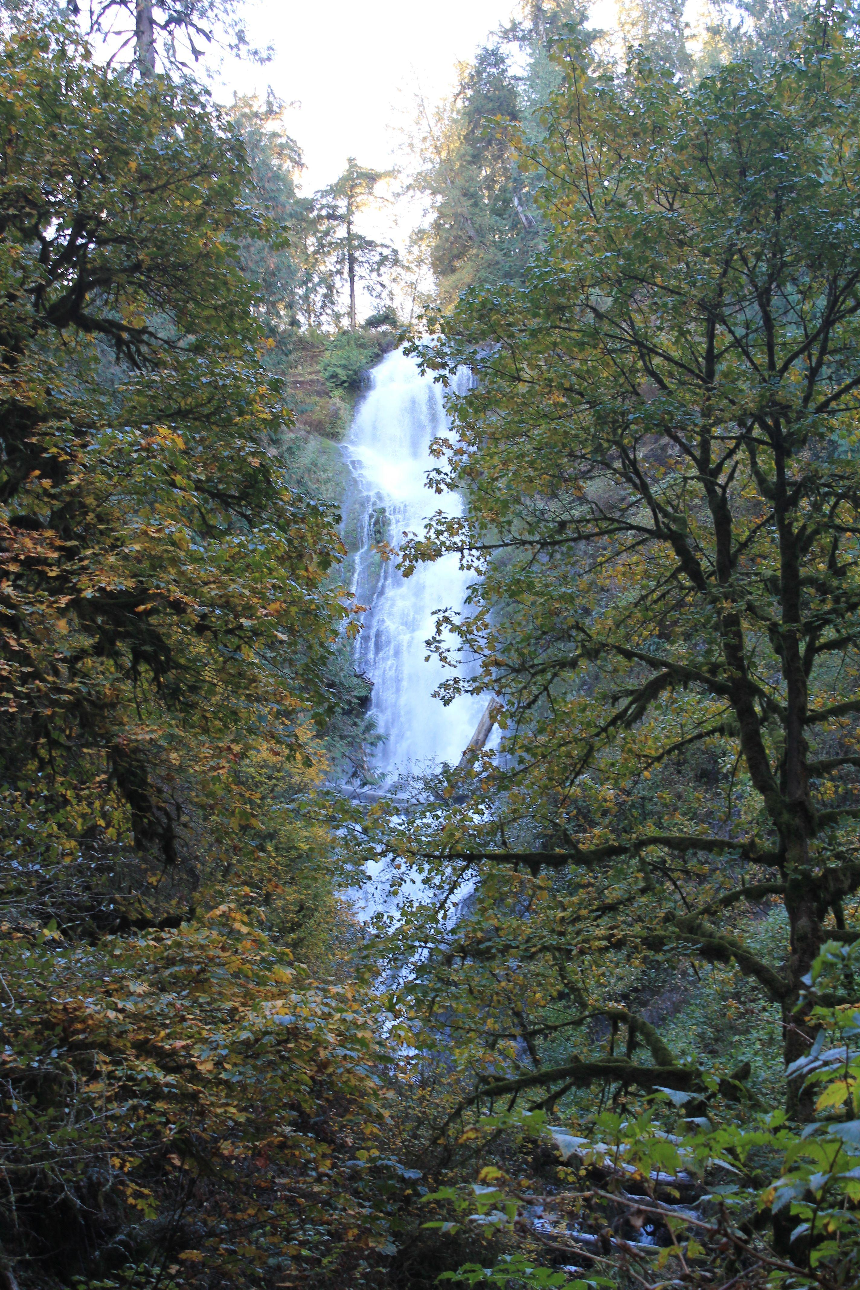 Munson Creek Falls. Hiking in Oregon. Creek