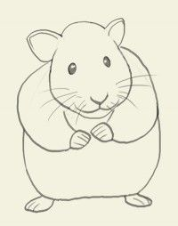 how to draw hamster drawing painting tutorials pinterest