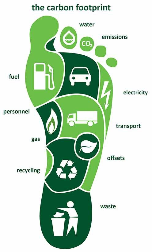 carbon footprint and water footprint environmental sciences essay Resources like water and energy are used to power the  fans do play a significant role in sport's environmental footprint  the ecology global network.