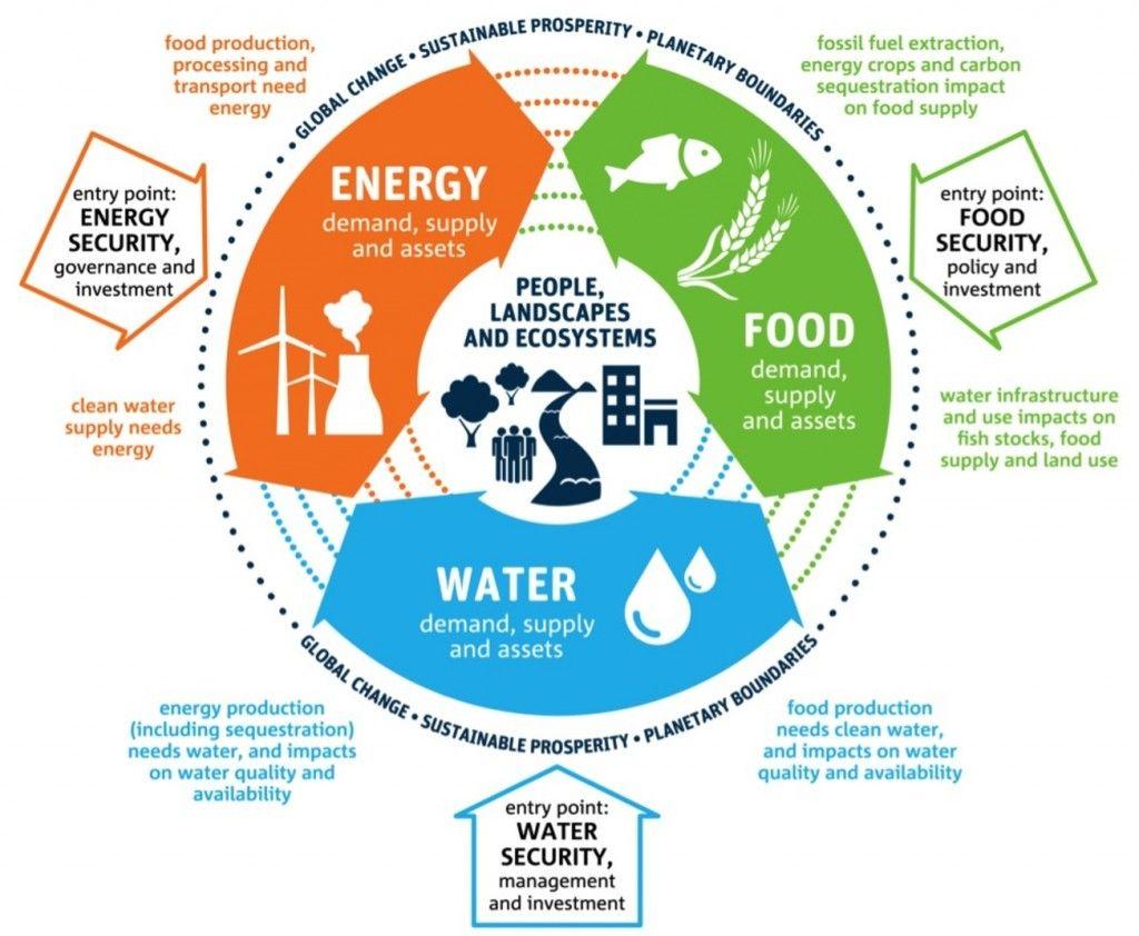 Energy - food - water cycle infographic | Renewable Energy ...