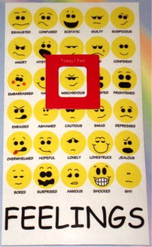 Mood Meter Magnet  Individual Feelings Chart Emotions Moods