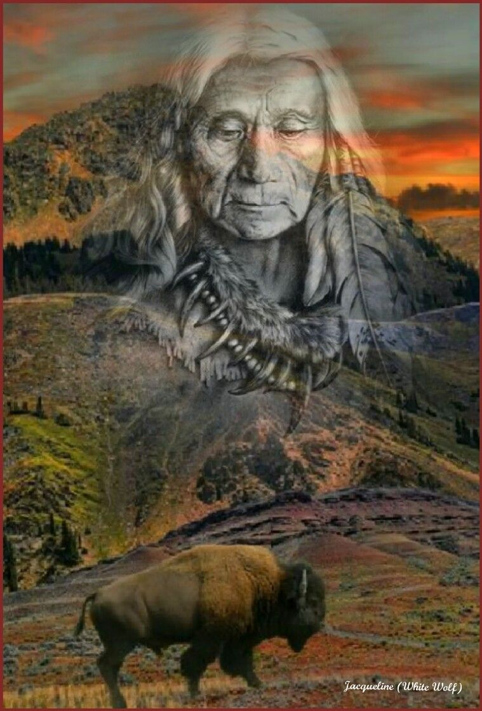 Mighty Buffalo & Bison Native american artwork