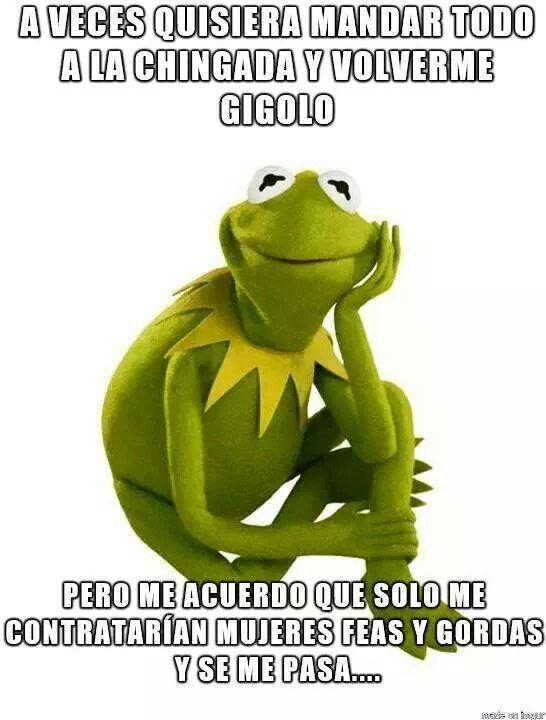 Funny Meme Applause : Maribel mesino la rana pinterest lol and jo o meara