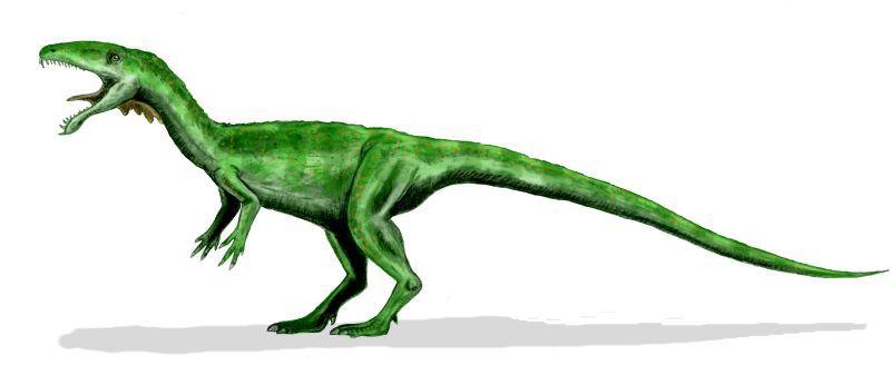 Masiakasaurus Animals Dinosaur Stuffed Animal Dinosaur