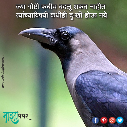 Meaning full quote 10 | Marathi Quotes | Meaning full quotes