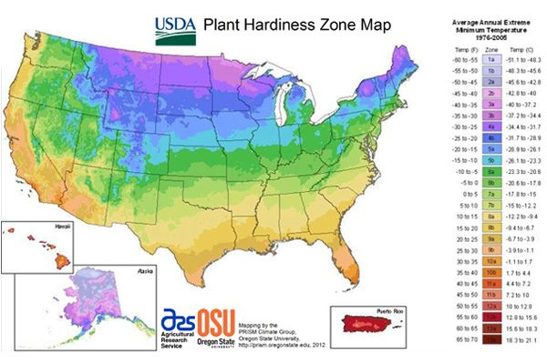 New hardiness zone map meets the digital world plants gardens and new hardiness zone map meets the digital world gumiabroncs Gallery