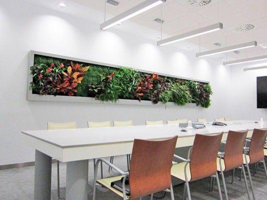 green wall office building slimgreenwall living wall by terapia urbana inhabitat httpinhabitatcom installs flourishing at ayesa advanced