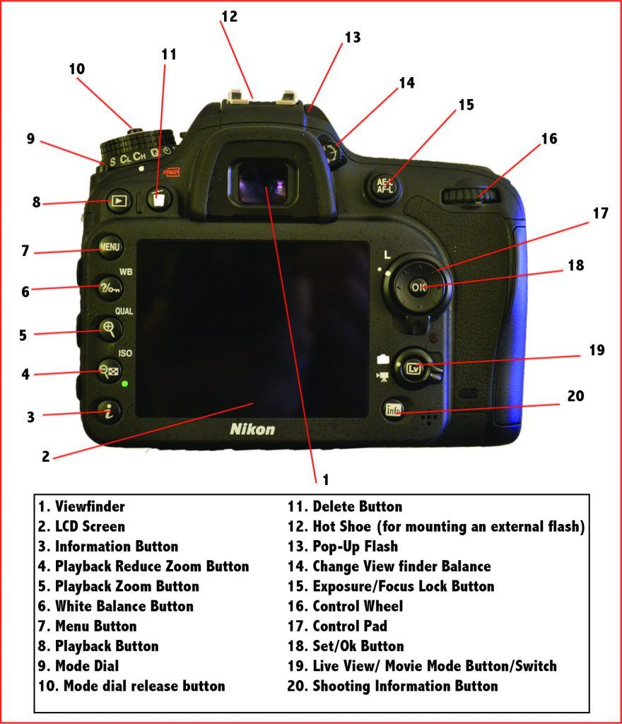 The Anatomy of a Camera | Simply DSLR Cameras | DSLR Cameras ...