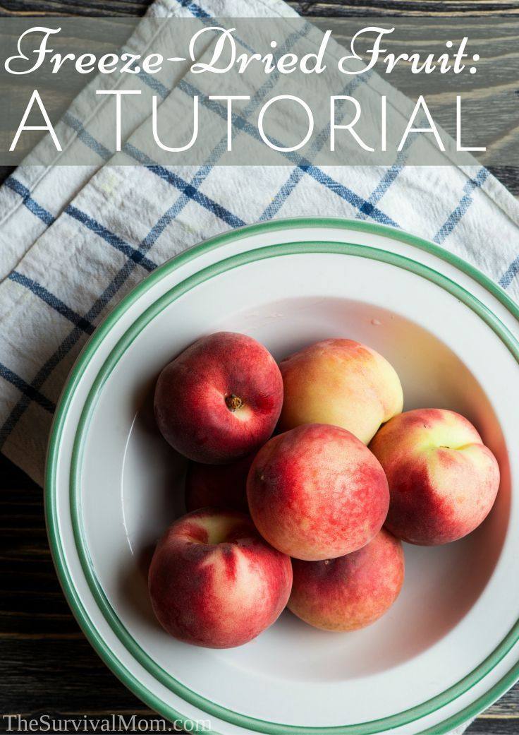 Freeze-Dried Fruit: A Tutorial - Survival Mom
