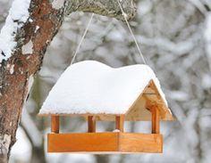 vogelfutterhaus selber bauen schritt f r schritt anleitung garten pinterest. Black Bedroom Furniture Sets. Home Design Ideas