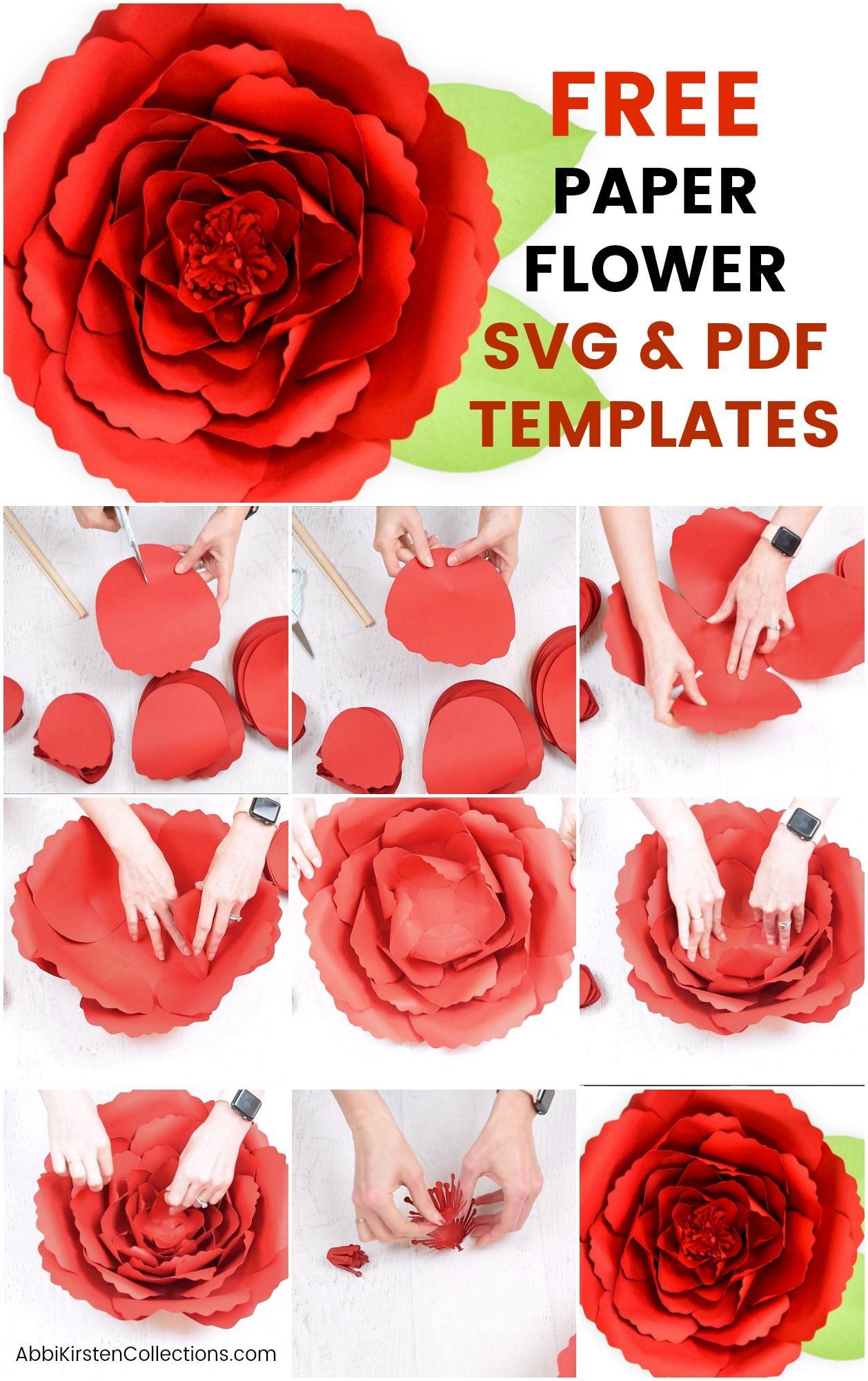 Free Paper Flower Templates How To Make Giant Poppy Paper Flowers Free Paper Flower Templates Paper Flower Template Paper Flowers