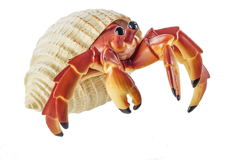 Safari Ltd Incredible Creatures Hermit Crab