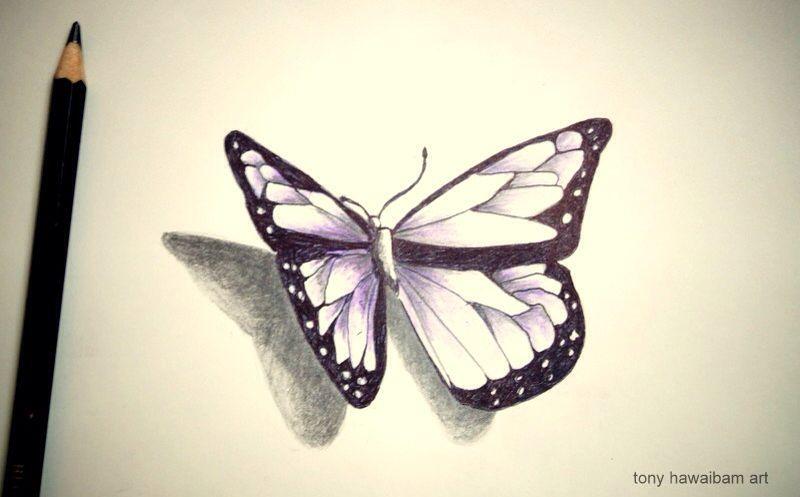 3d art butterfly pencil sketch