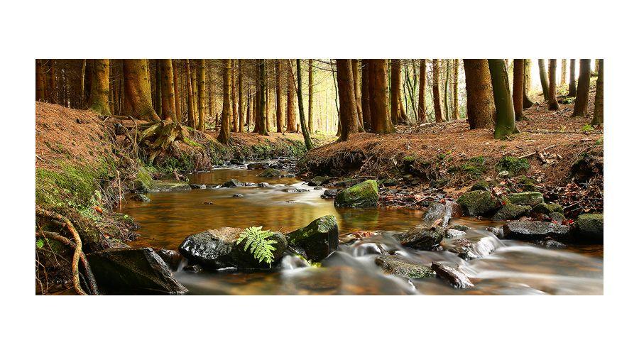 James Appleton Nature photography, Landscape photography