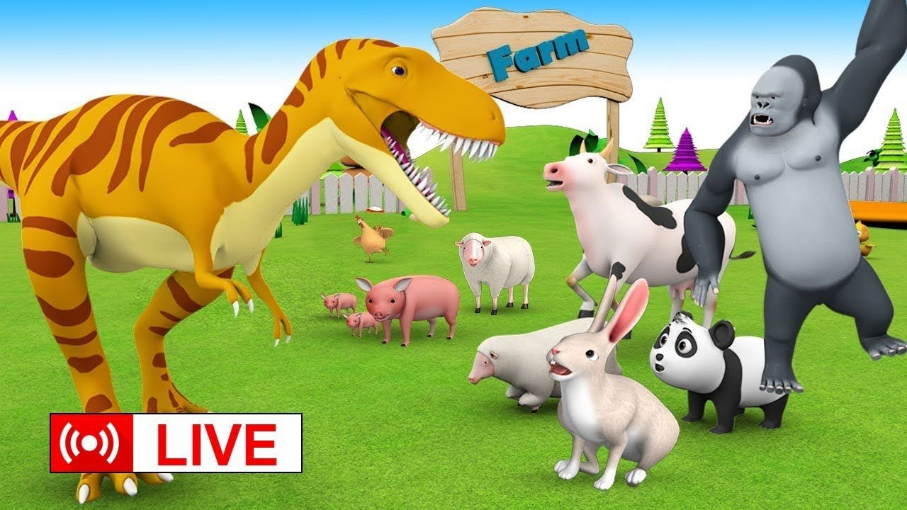 Kids Animal Family Live Learn Zoo Animals Forest