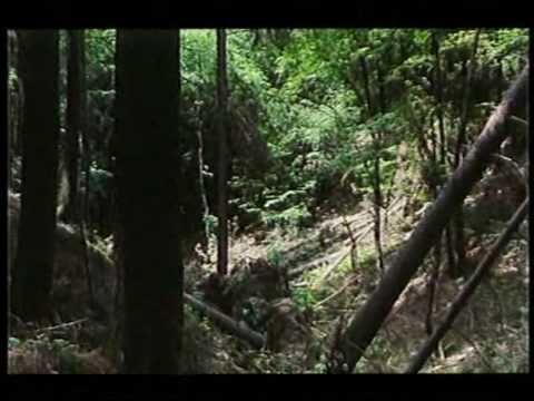 cz/sk - B.S.P. - Zeme vzdalena (official videoclip)