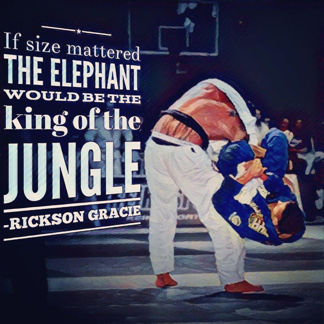 Rickson gracie poster