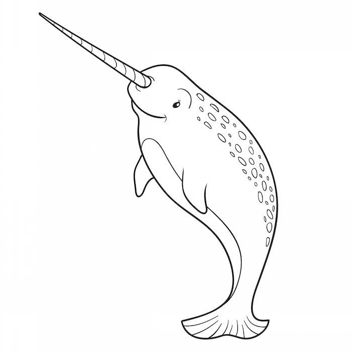 Beluga Or White Whale Coloring Page Coloring Pages White Whale
