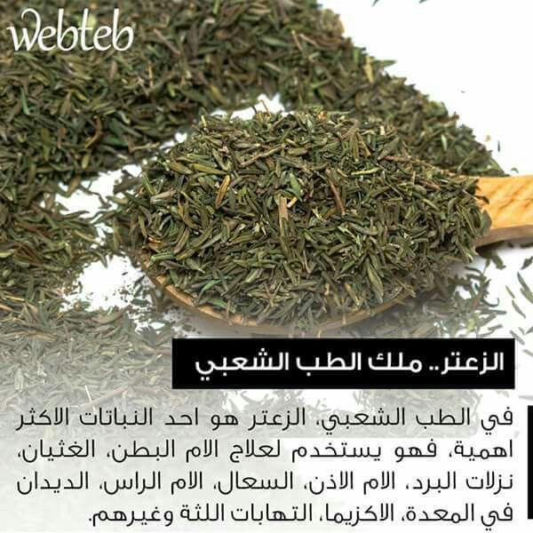 فوائد الزعتر Natural Herbs Herbs How To Dry Basil