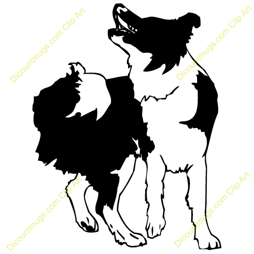 clipart 12728 bordercollielookingup bordercollielookingup mugs t rh pinterest co uk border collie clip art free