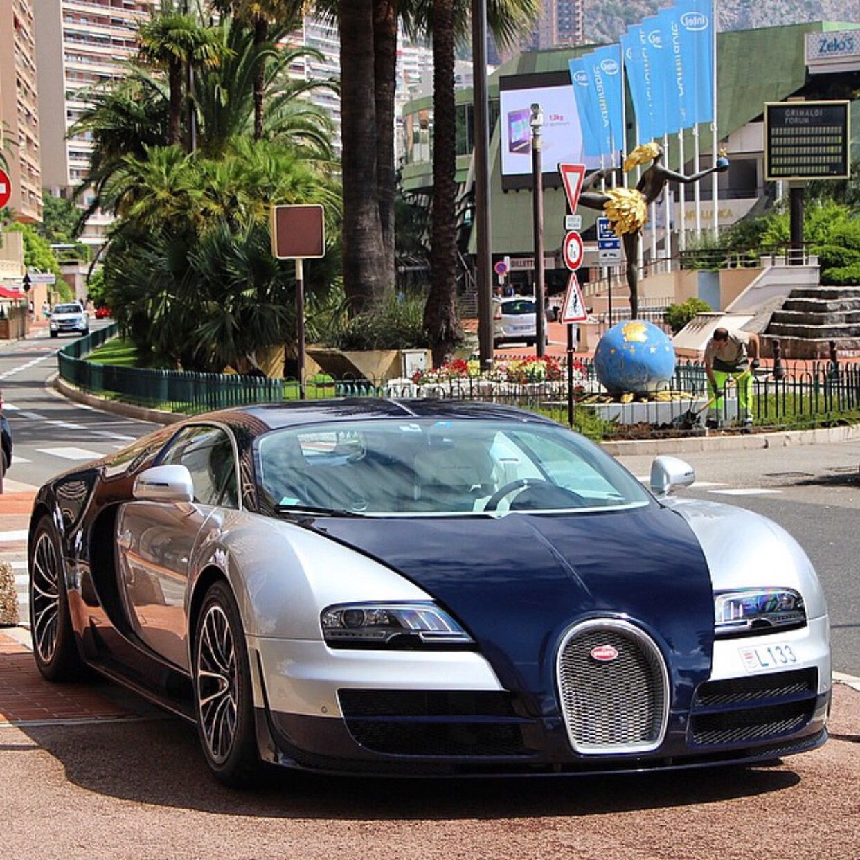 Bugatti Veyron Super Sport Painted In Silver & Navy Blue