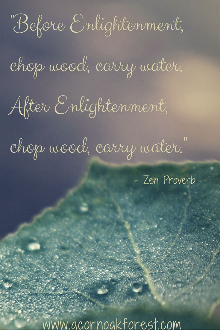 Bluehost Com Into The Woods Quotes Water Quotes Enlightenment