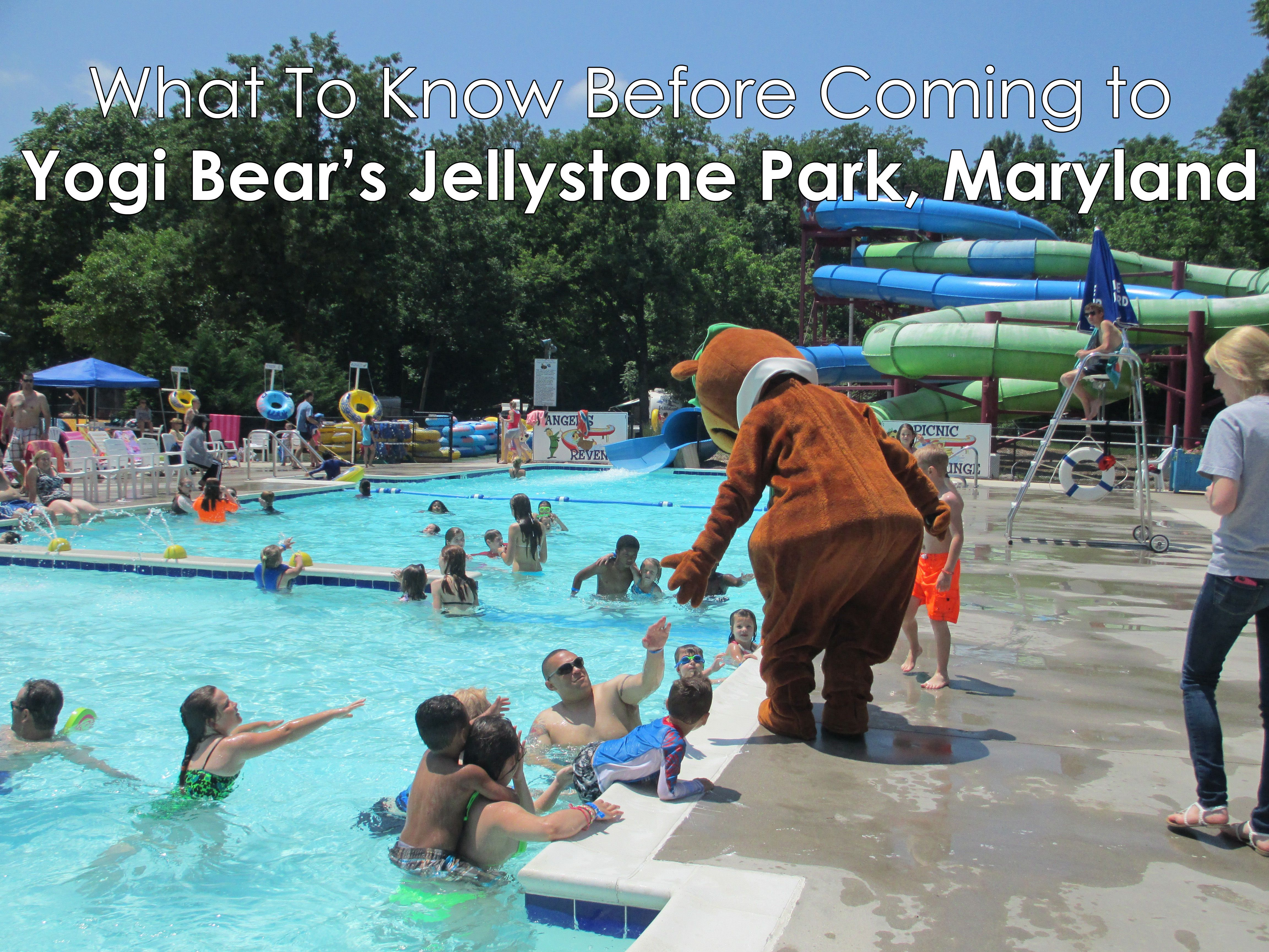 What To Know Before Coming to Yogi Bear's Jellystone Park, Maryland