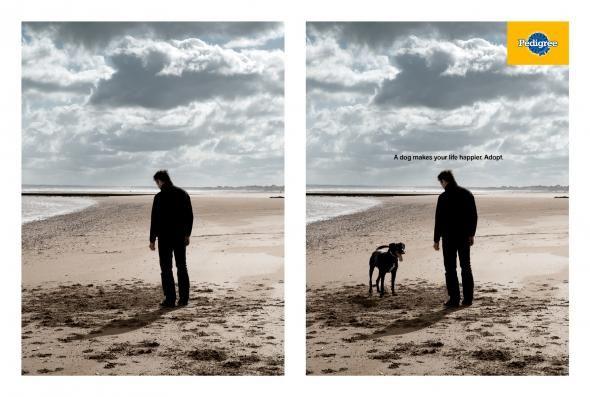 Pedigree Dog 3 Print Ads Best Ads Creative Advertising