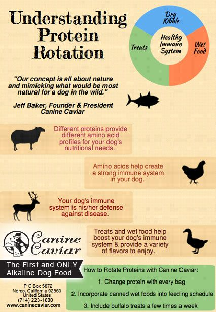 protein Rotation for Better Pet Health  http://social.caninecaviar.com/blog/2014/06/protein-rotation-pet-health/