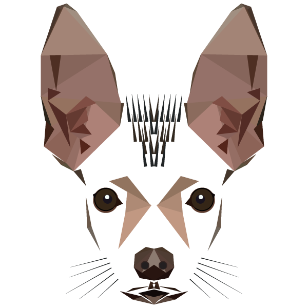 Resultado De Imagen Para Perro Sin Pelo Del Peru Vectores