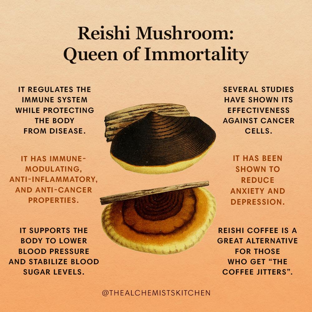 Reishi Mushroom: Queen of Immortality