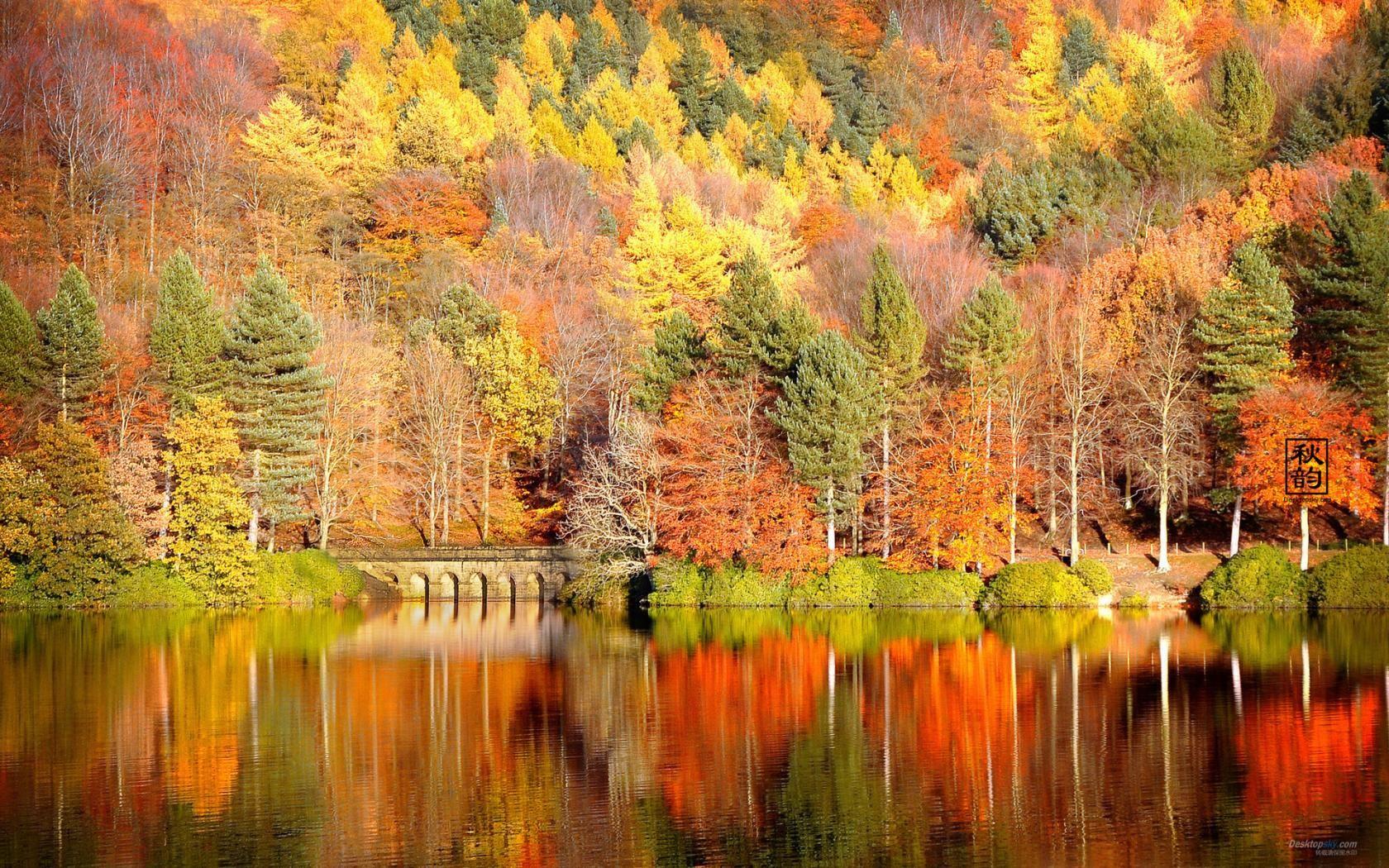 Autumn Backgrounds Free Fall Summertime Pinterest
