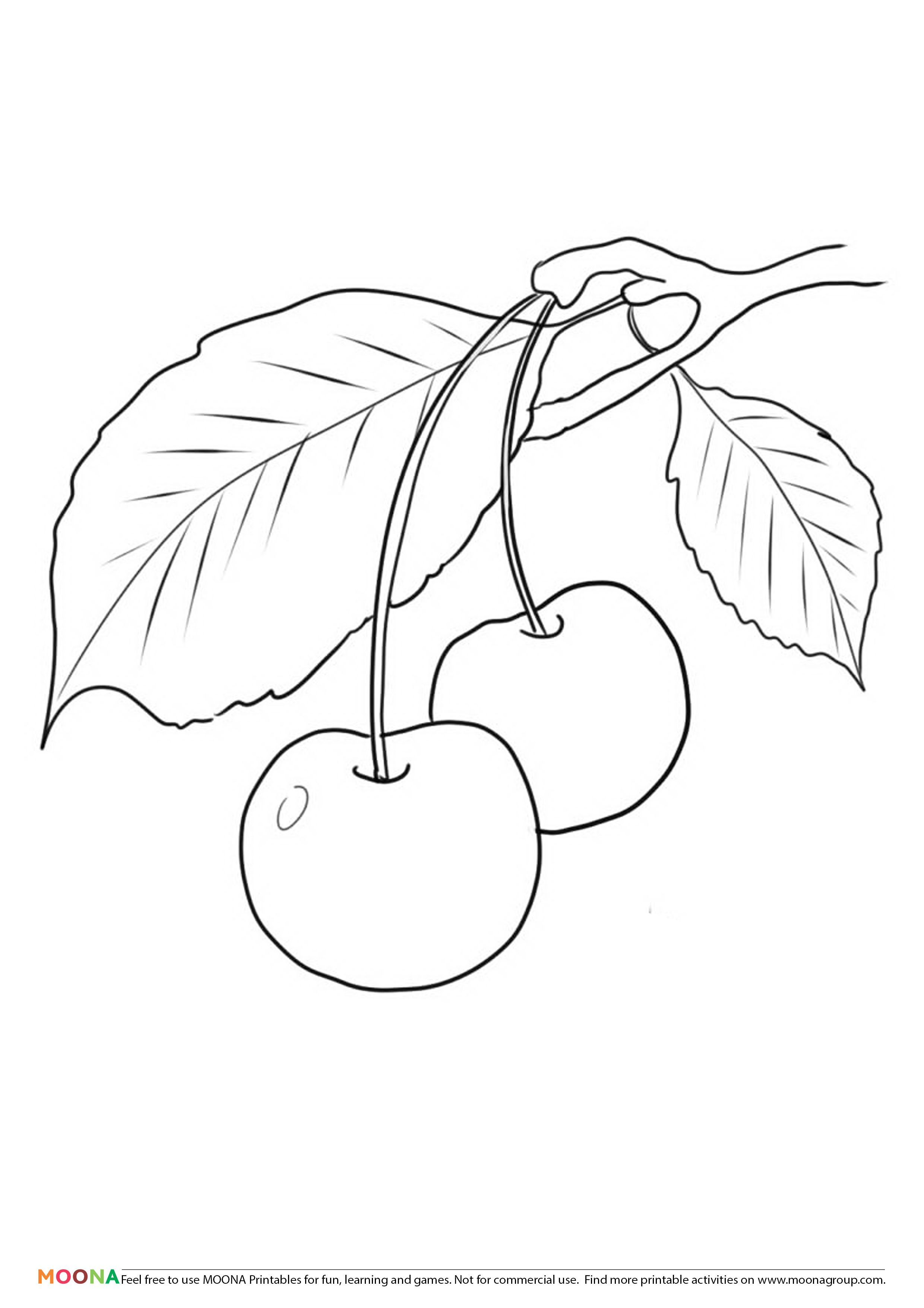 Free Printable Coloring Pages Moona Fruits And Berries Tree