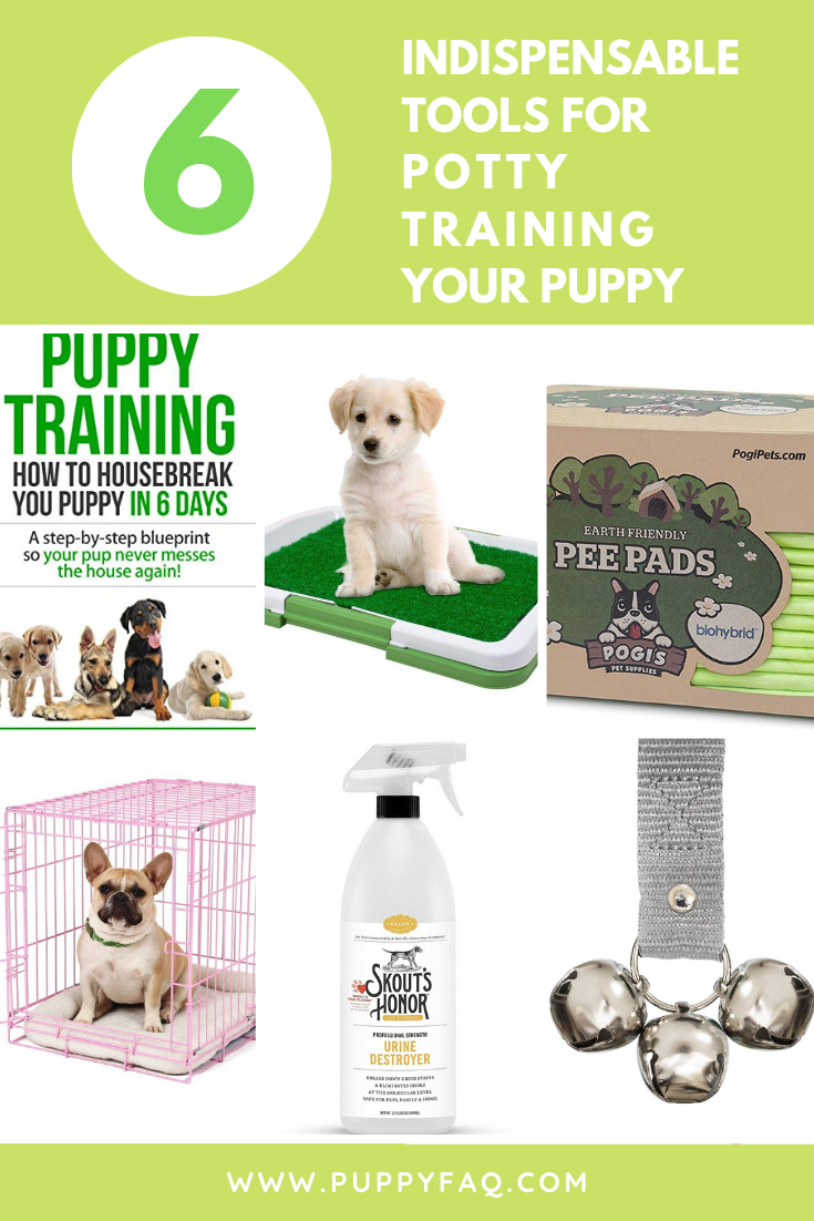 6 Indispensable Tools For Potty Training Your Puppy Potty Training Puppy Puppy Training Training Your Puppy