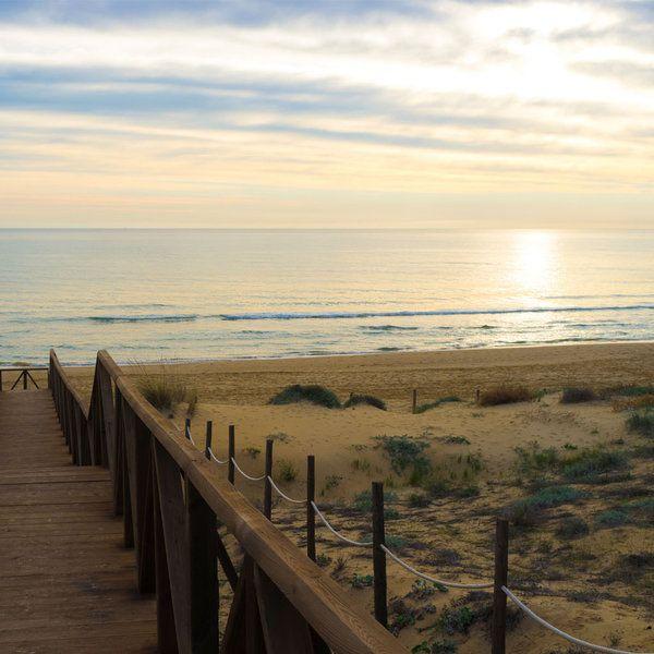 24 Playas Geniales Para Ir Con Niños Playa España Guardamar Del Segura