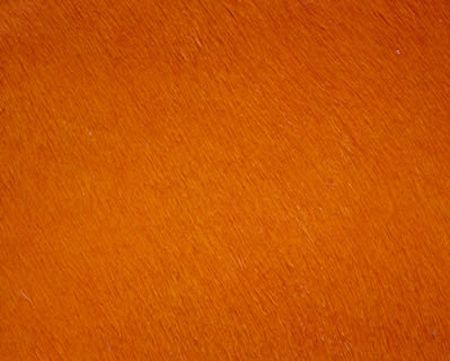 Cavalier Orange by Green Hides