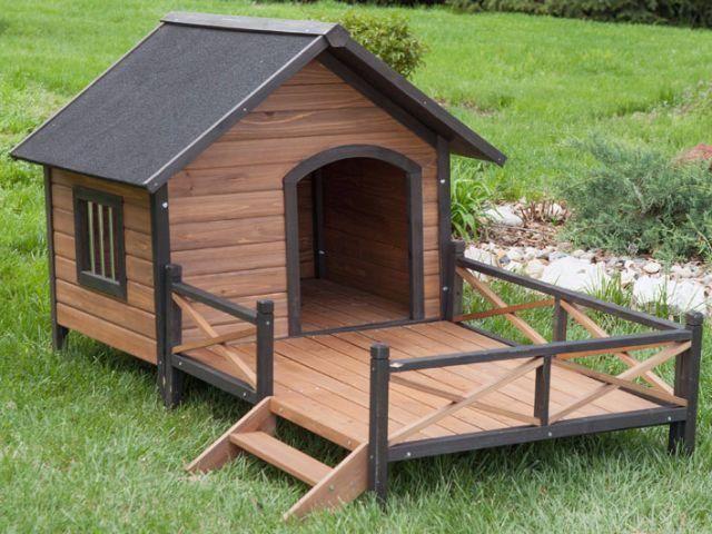Casa pra cachorro e gato