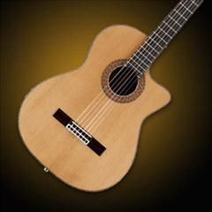 HelloMusic: Guild Guild GN-5 GAD Series Nylon String Acoustic-Electric Guitar - Natural
