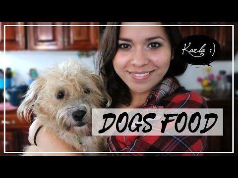FÁCIL Alimento para perros/gatos (croquetas y en pasta) - YouTube