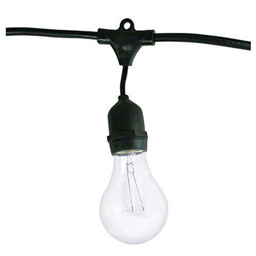 Bulbrite STRING15, E26, A19Kt Außen Lichterkette mit Vintage Edison Birne mit 15 LEDs, 48, M Bulbrite http://www.amazon.de/dp/B00C301YE6/ref=cm_sw_r_pi_dp_wdpwvb06CCT1H