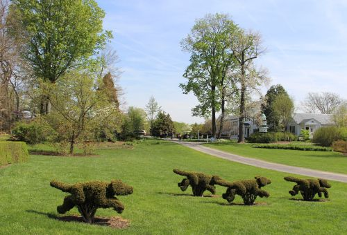 Ladew Topiary Gardens