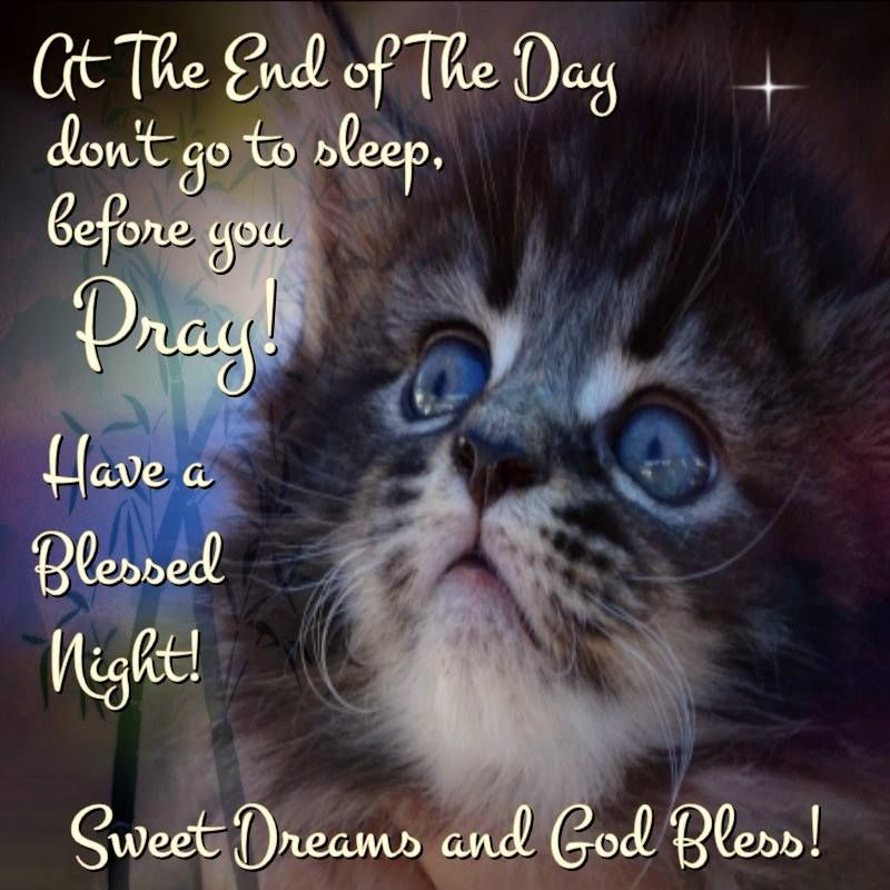 20 Blessed Night Quotes Pictures And Ideas On Weric