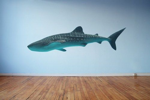 Etonnant Large Whale Shark Wall Decal | WilsonGraphics   Housewares On ArtFire