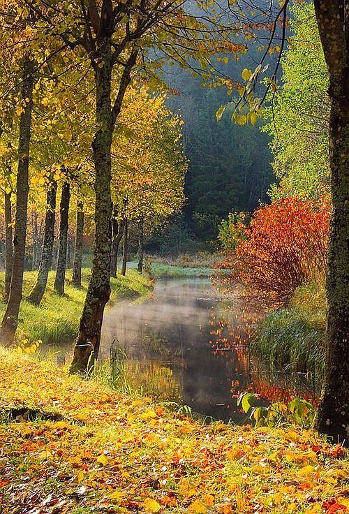Northern California Style Why I Heart Autumn Autumn Scenery Beautiful Nature Fall Pictures