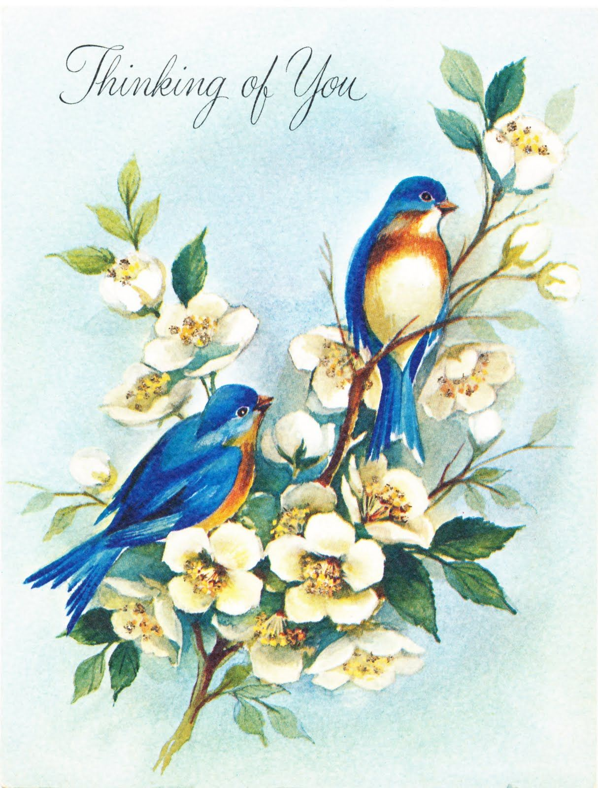 Bird images from vintage greeting cards free vintage bird graphics bird images from vintage greeting cards m4hsunfo Image collections