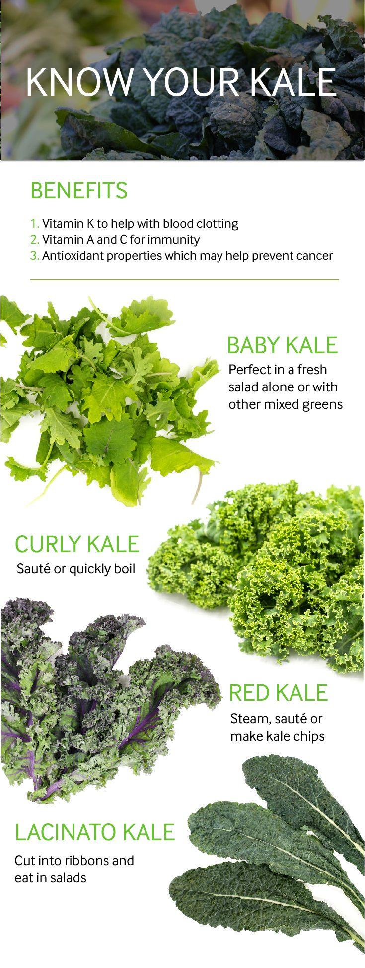 How well do you know your kale types of kale kale