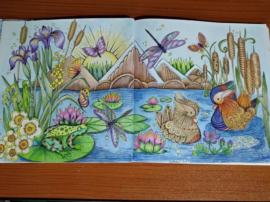 book mein sommer spaziergang rita berman isbn