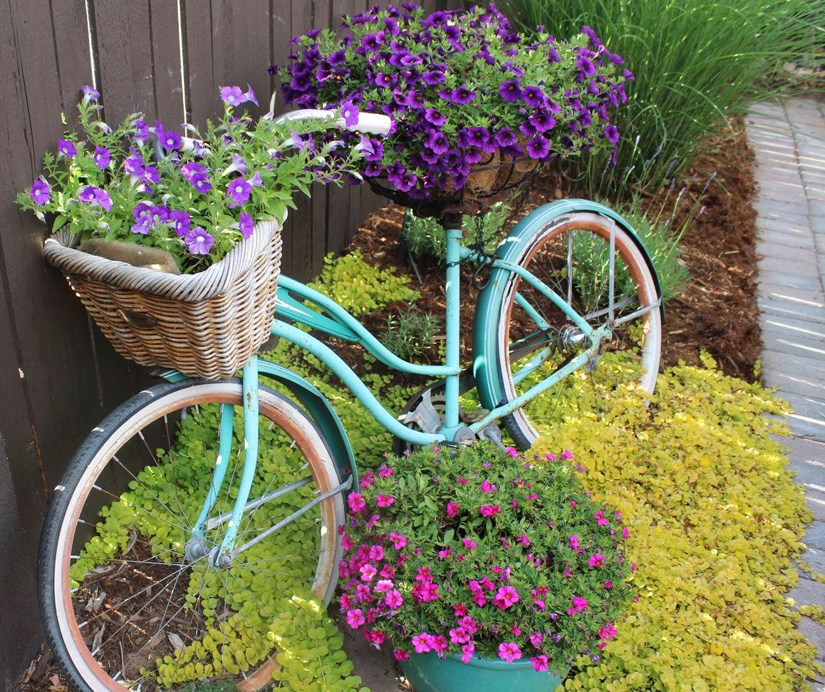 Uncategorized Bicycle Planters vintage bike as planter greeley garden tour pinterest planter