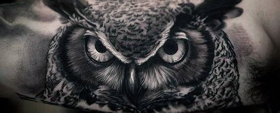 40 Realistic Owl Tattoo Designs For Men Nocturnal Bird Ideas Men S Style And Fashion Owl Eye Tattoo Realistic Owl Tattoo Bird Tattoo Sleeves